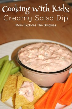 Creamy Salsa Dip   Mom Explores the Smokies