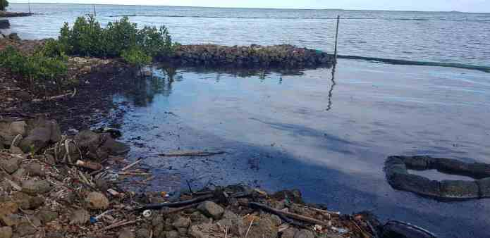 Ecologists blast government over Mauritius oil spill