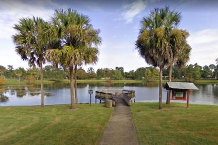The Dovers Orlando Homes for Sale