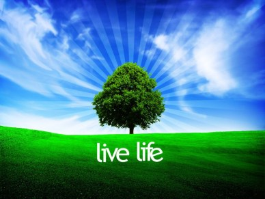 live_life_orlando espinosa