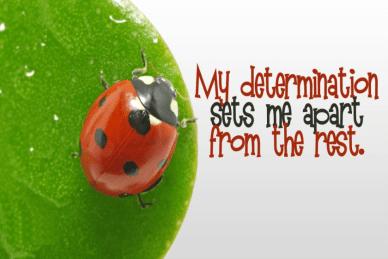 my determination orlando espinosa