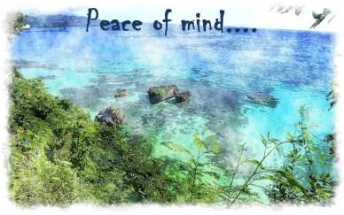 a commodity peace of mind orlando espinosa