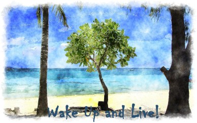 wake up daily orlando espinosa