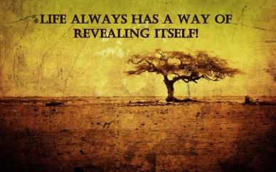 life-reveals-itself-orlando-espinosa