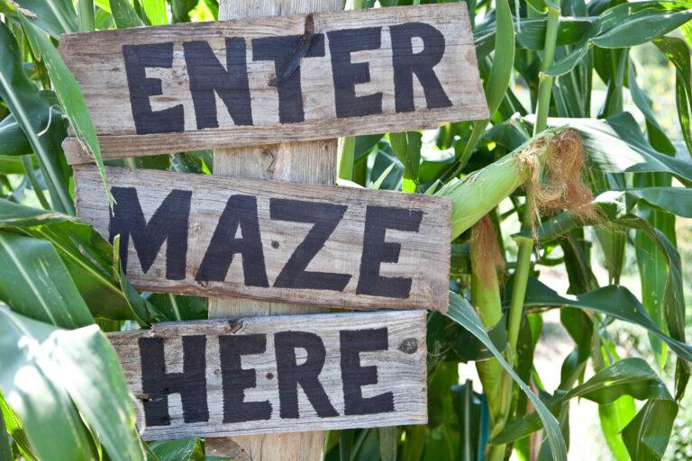 Corn Mazes in Orlando