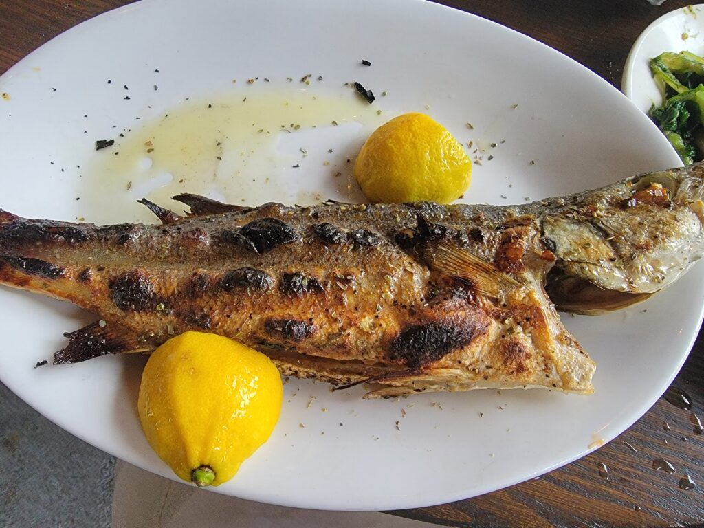 food at taverna opa