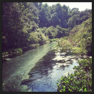 Beautiful spring-fed river to float down.