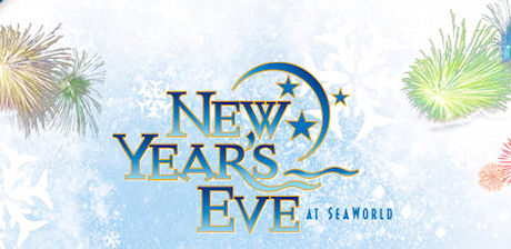 SeaWorld New Years Eve party