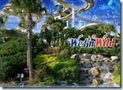 wetwild ff