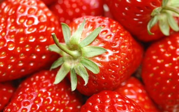 Strawberries Orlando: image of fresh ripe strawberries