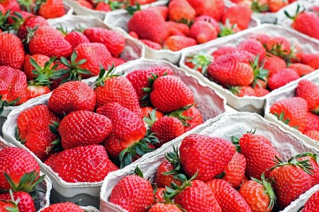 Things to do this weekend in Orlando: image of fresh strawberries at a u-pick strawberry farm near Orlando