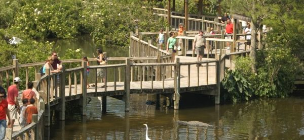 Labor Day weekend things to do: image of Gatorland in Orlando