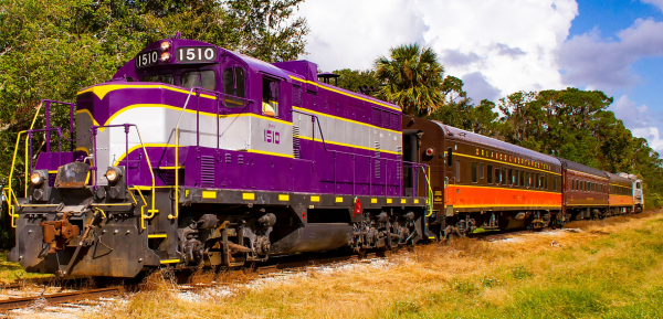The Royal Palm Railway Experience: image of the train
