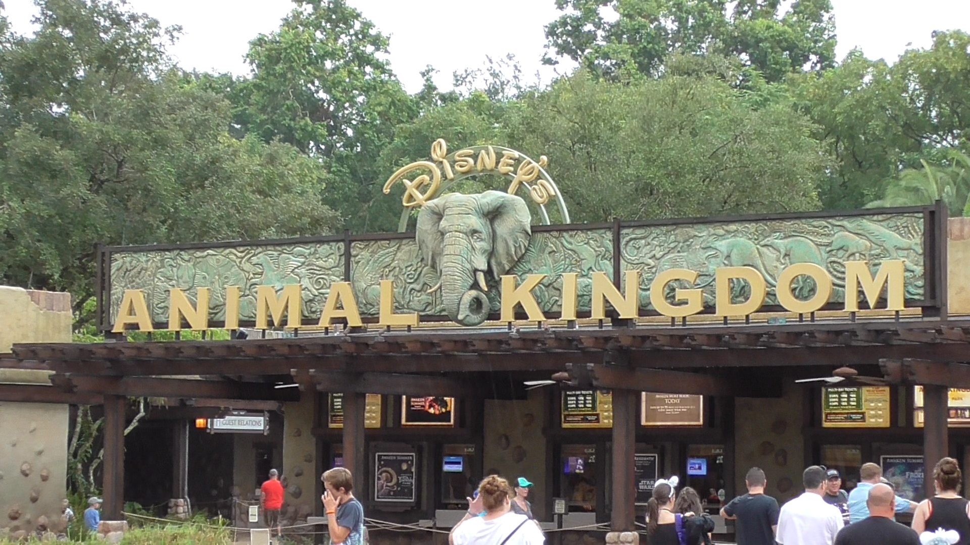 Disney World Dining Options