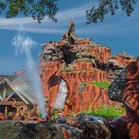Splash Mountain Evacuated at Magic Kingdom