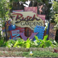 Permits Filed for Possible New Attraction at Busch Gardens Tampa Bay