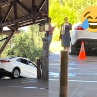 Car Accidentally Drives Down Stairs at Disney's Wilderness Lodge