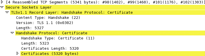 WireShark capture of a 5,323-byte TLS certificate chain