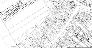 A section of the 1851 OS Map showing the proposed site for Coronation Park
