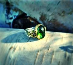 silvio - 1106 - ring 2