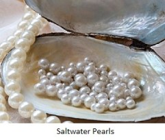 silvio - pearls - salt