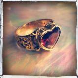 silvio - ring 9