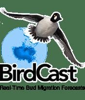 forecast the migration of birds