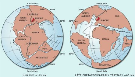 Pangaea was a supercontinent that existed during the late Paleozoic and early Mesozoic eras. It assembled from earlier continental units approximately 300 million years ago, and it began to break apart about 175 million years ago.