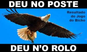 DEU NO POSTE - Resultado Jogo do Bicho hoje, 08/03/2021