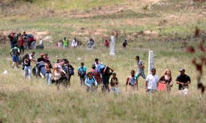 Brasil tem 43 mil pessoas reconhecidas como refugiadas, diz Conare