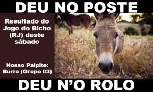 DEU NO POSTE - Resultado Jogo do Bicho hoje, 27/02/2021