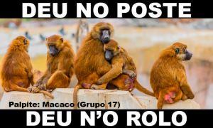 DEU NO POSTE - Resultado Jogo do Bicho hoje, 01/03/2021