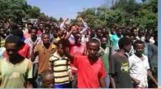 Oromo Students protest @ Ambo, Oromia 25th November 2015 picture1
