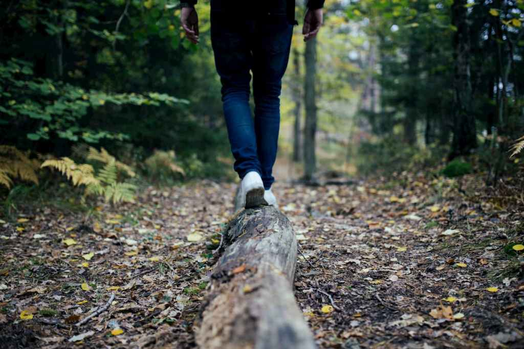 Person walking across a log in a forest.
