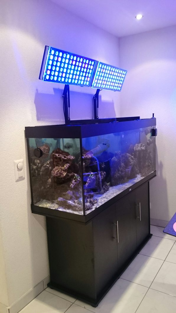 Reef Led Lights