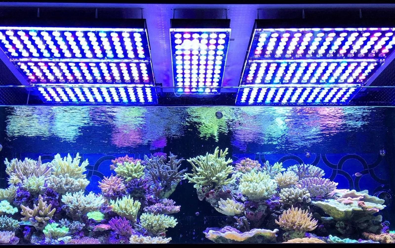 Aquarium Led Beleuchtung 2017 2018 Orphek