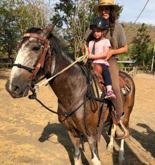 newhorses11
