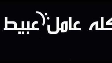 محمد عبد المجيد ... يكتب أقباطنا .. أعباطنــا!