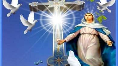 المجد لله فلماذا نمجد العذراء