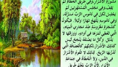 شرح وتفسير المزمور الأول (عظات مباشرة على اليوتيوب)