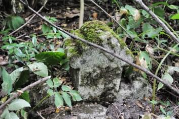 Pozostałości po cmentarzu prawosławnym w Czerniczynie