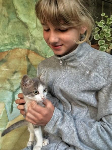 W monasterze w Kyrdzali schronienie znalazły liczne okoliczne koty