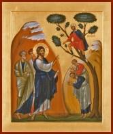 calling-zacchaeus-copy