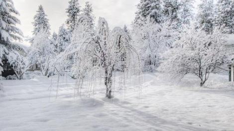 Μ. Λέκκας : Βαρύς ο φετινός χειμώνας - Με συνέχειες η «Σοφία»