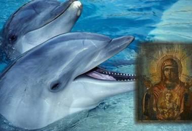 Ρωσία : 12 δελφίνια έβγαλαν από τον βυθό εικόνα της Παναγίας!