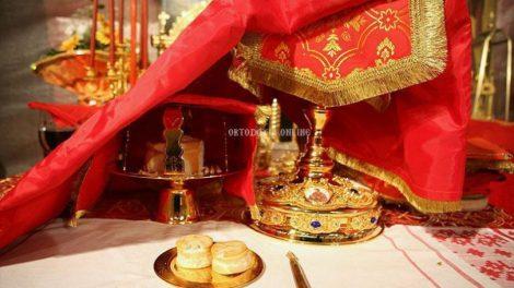π. Σάββας Αγιορείτης: Πόσες μέρες αντέχει ο Χριστιανός τις δαιμονικές ενέργειες δίχως την Θεία Κοινωνία