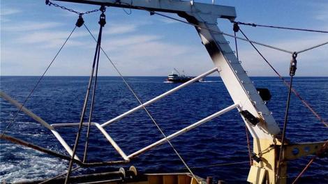 Βίντεο: Τούρκοι ψαράδες αλωνίζουν ανενόχλητοι μέσα σε ελληνικά ύδατα