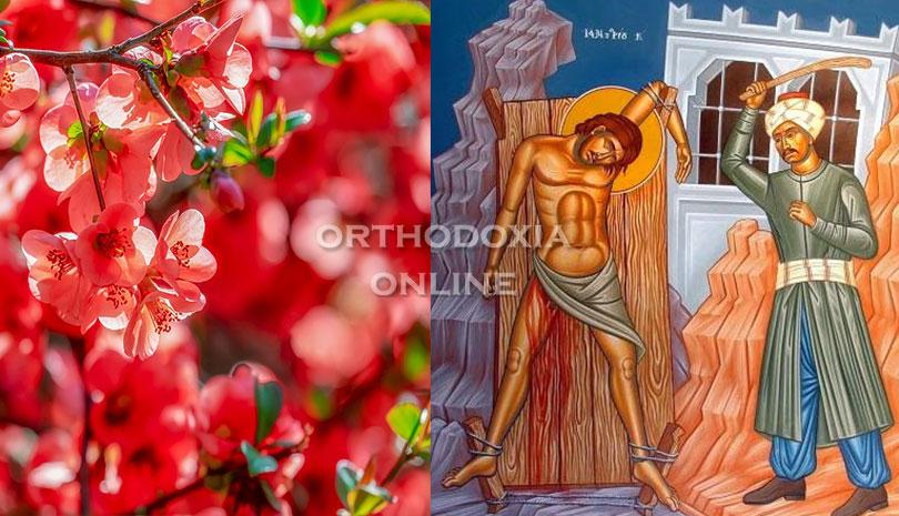 Εορτολόγιο 2020: Μεγάλη Πέμπτη 15 Απριλίου Άγιος Μιχαήλ ο Βουρλιώτης