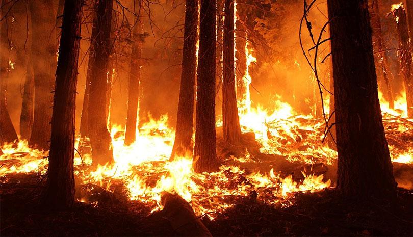 Άνδρος: Σε εξέλιξη μεγάλη φωτιά
