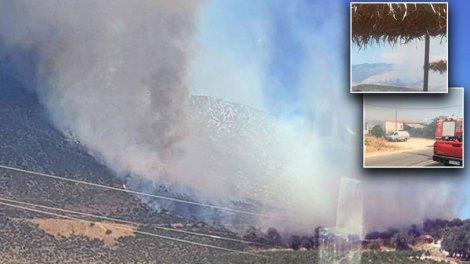Πυρκαγιές σε Αρτέμιδα και Δελφούς